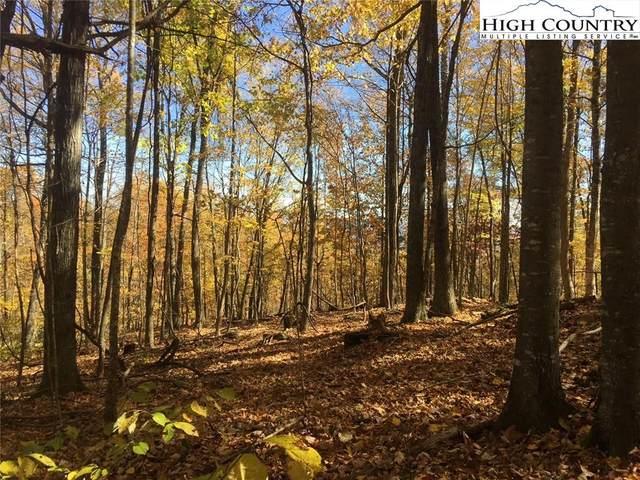 TBD Lot# 42 Spring Oak Street, Jefferson, NC 28640 (#227657) :: Mossy Oak Properties Land and Luxury