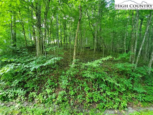 TBD Creek Crossing Road, Todd, NC 28684 (#227872) :: Mossy Oak Properties Land and Luxury
