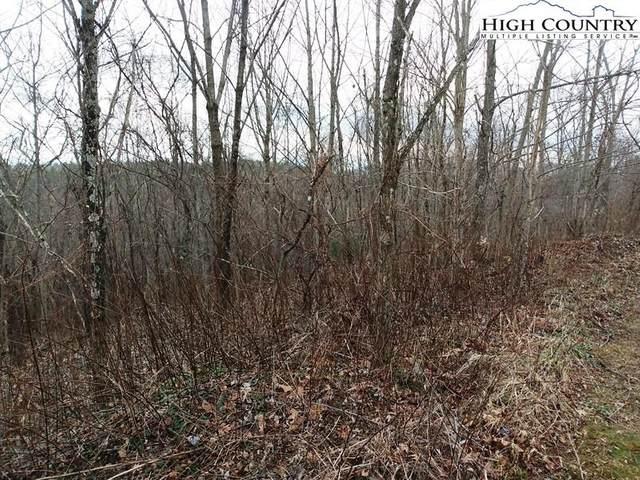 TBD Autumn Run, West Jefferson, NC 28694 (#227892) :: Mossy Oak Properties Land and Luxury