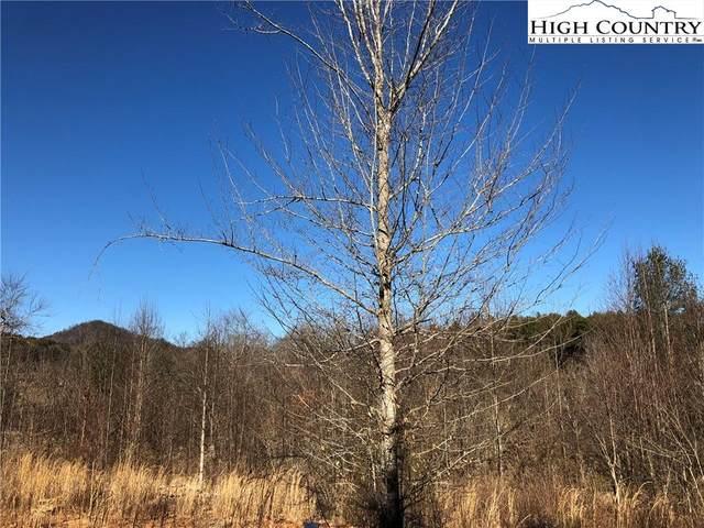 131 Ivy Ridge Lane, Purlear, NC 28665 (#227915) :: Mossy Oak Properties Land and Luxury
