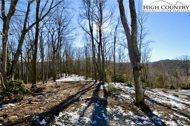 138R Firethorn Trail, Blowing Rock, NC 28605 (#227962) :: Mossy Oak Properties Land and Luxury