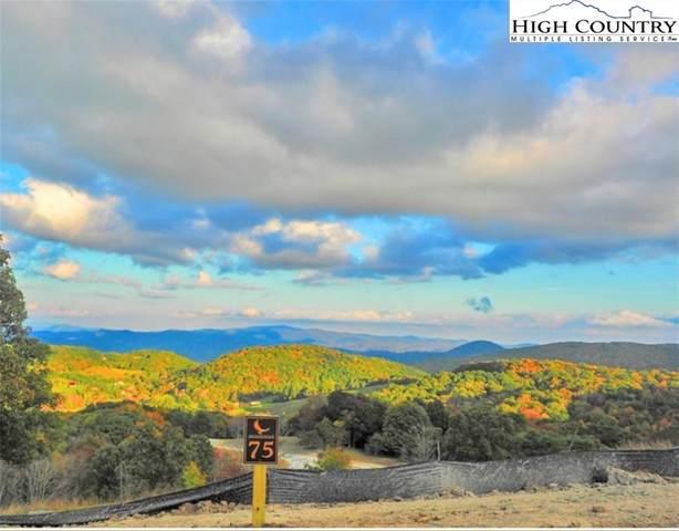 75 Eagle Peak Trail, Banner Elk, NC 28604 (#228044) :: Mossy Oak Properties Land and Luxury