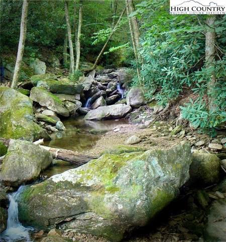 TBD Buckeye Ridge Road, Beech Mountain, NC 28604 (#228115) :: Mossy Oak Properties Land and Luxury