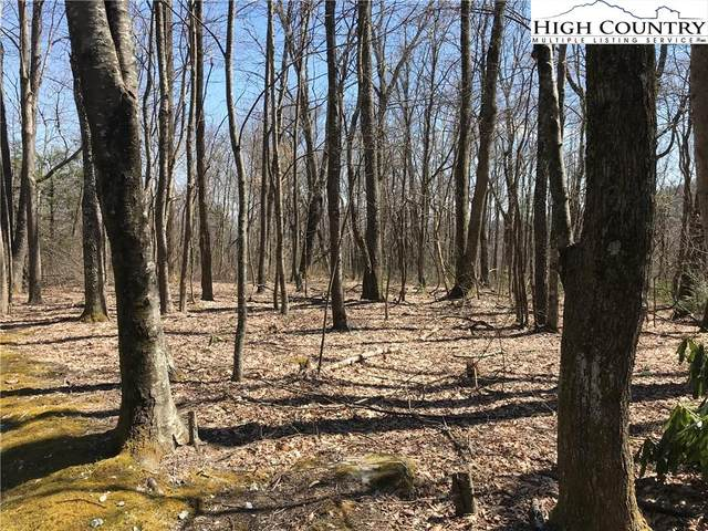 15,16,17,18,19 C/W Hemlock Ridge Road, Blowing Rock, NC 28605 (#228257) :: Mossy Oak Properties Land and Luxury