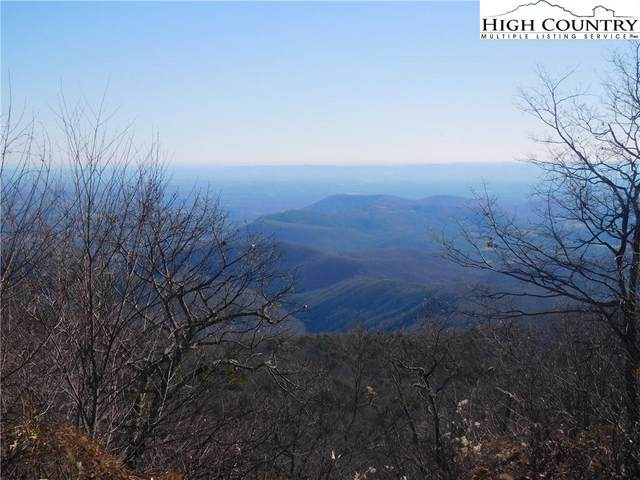 Lot 3 Green Mountain Road, Sparta, NC 28675 (#228322) :: Mossy Oak Properties Land and Luxury