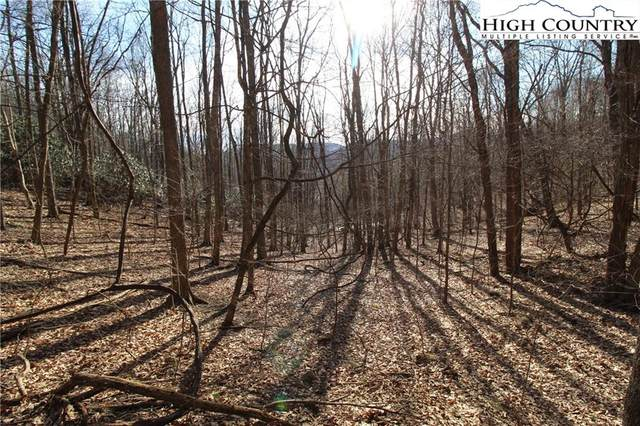 Lot 7 Indian Cove Drive, West Jefferson, NC 28694 (#228402) :: Mossy Oak Properties Land and Luxury