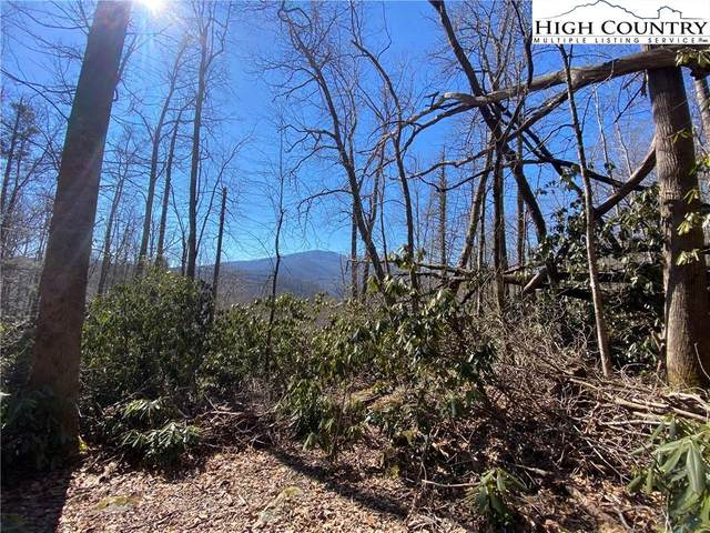 TBD Tweetsie Lane, Banner Elk, NC 28604 (#228420) :: Mossy Oak Properties Land and Luxury