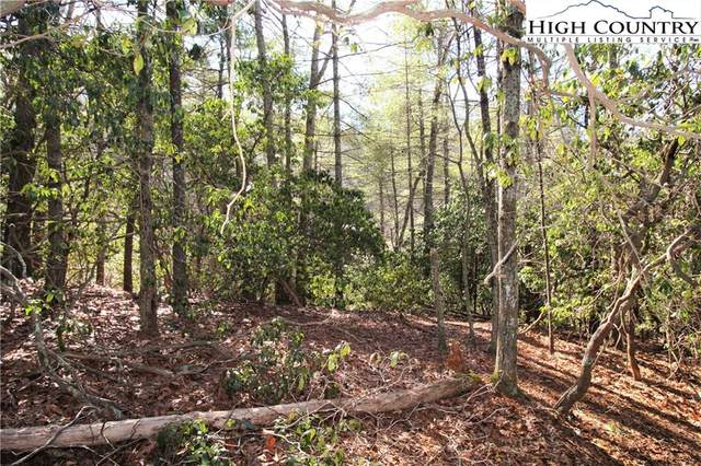 TBD Lexington Drive, Fleetwood, NC 28626 (#228433) :: Mossy Oak Properties Land and Luxury