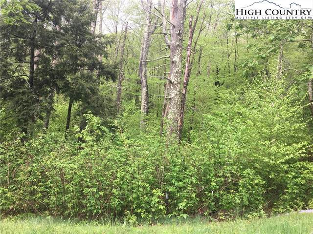 Lot 24 Linville River Lane, Linville, NC 28646 (#228490) :: Mossy Oak Properties Land and Luxury