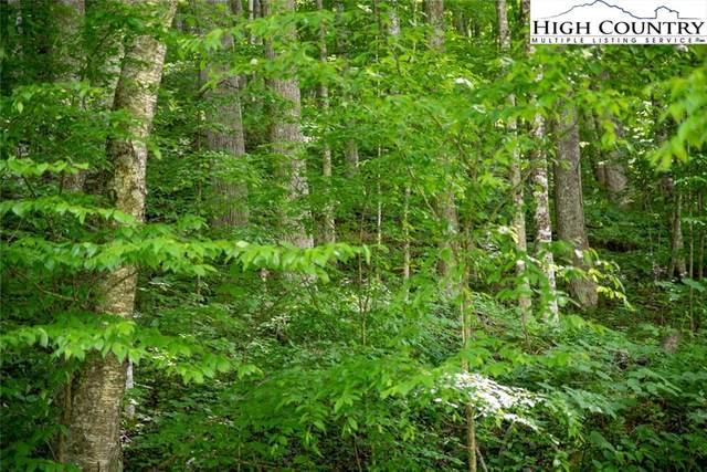LOT 19 & 20 Oak Trail, Creston, NC 28615 (#228602) :: Mossy Oak Properties Land and Luxury