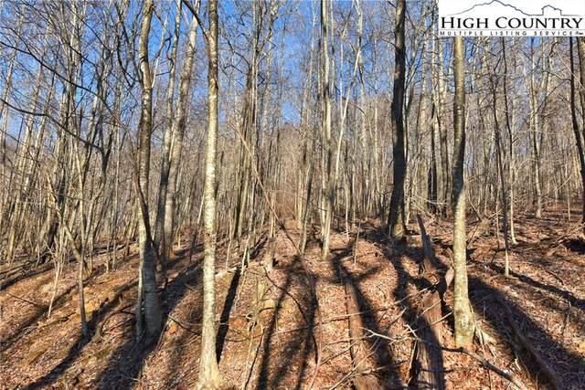 TBD Canon Lane, West Jefferson, NC 28694 (#228633) :: Mossy Oak Properties Land and Luxury