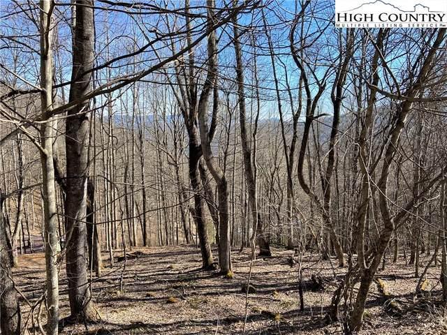 Lot #18 Larkspur Trail, Banner Elk, NC 28604 (#229107) :: Mossy Oak Properties Land and Luxury