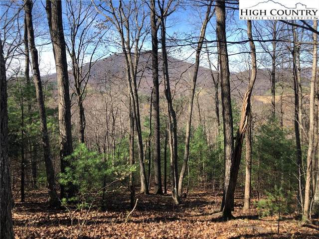 TBD Bare Knob Road, Jefferson, NC 28640 (#229223) :: Mossy Oak Properties Land and Luxury