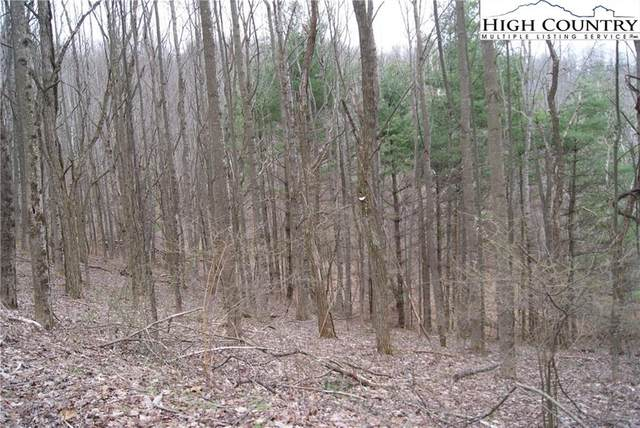Lot 61 Forest Hill Drive, Sparta, NC 28675 (#229228) :: Mossy Oak Properties Land and Luxury