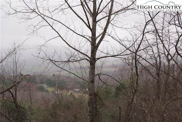 Lot 58 Toms Knob Road, Sparta, NC 28675 (#229229) :: Mossy Oak Properties Land and Luxury