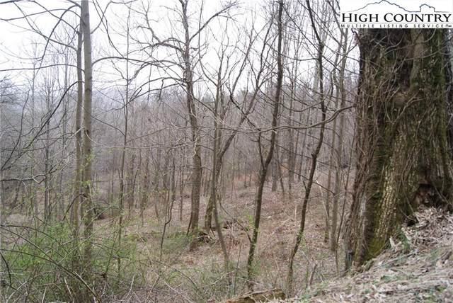 Lot 57 Toms Knob Road, Sparta, NC 28675 (#229230) :: Mossy Oak Properties Land and Luxury