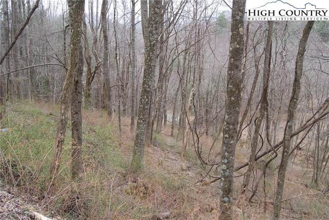 Lot 56 Toms Knob Road, Sparta, NC 28675 (#229231) :: Mossy Oak Properties Land and Luxury