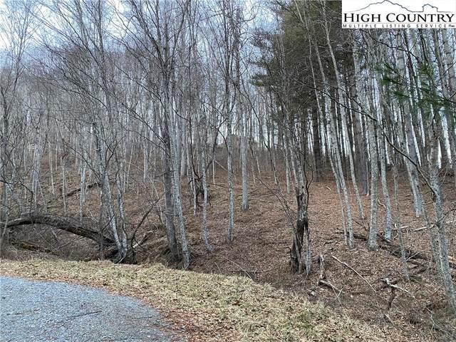 Lot 55 Laurel Mountain Drive, Sparta, NC 28675 (#229234) :: Mossy Oak Properties Land and Luxury