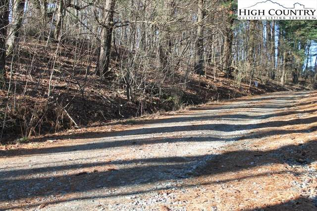 0 Browns Chapel Road, Boone, NC 28607 (#229459) :: Mossy Oak Properties Land and Luxury
