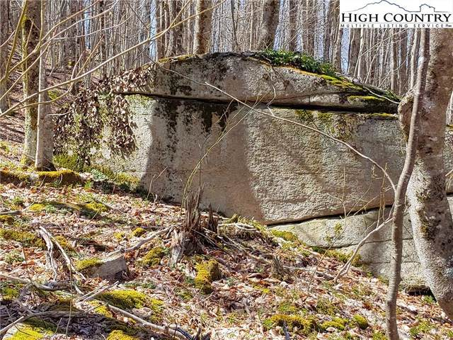 213 Wild Daisy Lane, Beech Mountain, NC 28604 (#229567) :: Mossy Oak Properties Land and Luxury