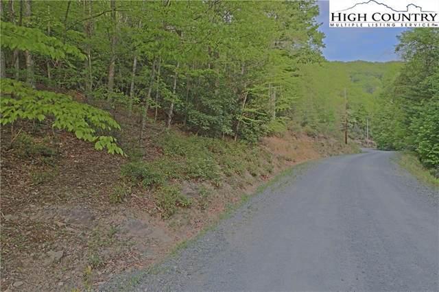 306 Poplar Drive Beech Mtn, Beech Mountain, NC 28604 (#230160) :: Mossy Oak Properties Land and Luxury