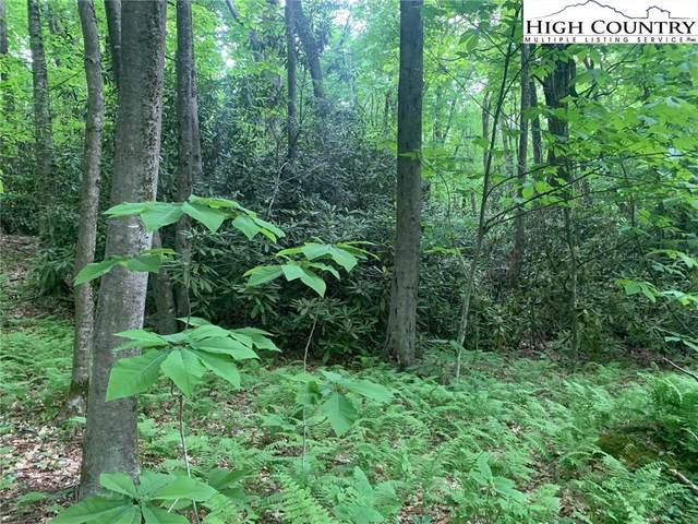 #2 Jewel Weed Lane, Blowing Rock, NC 28605 (#230769) :: Mossy Oak Properties Land and Luxury