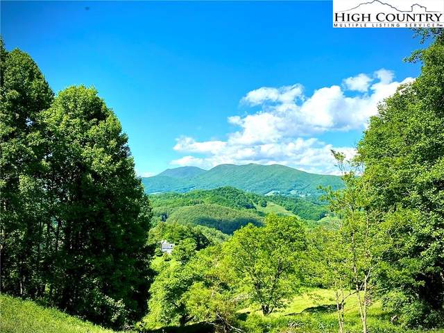 TBD Old Rose Drive, Sugar Grove, NC 28679 (#230790) :: Mossy Oak Properties Land and Luxury