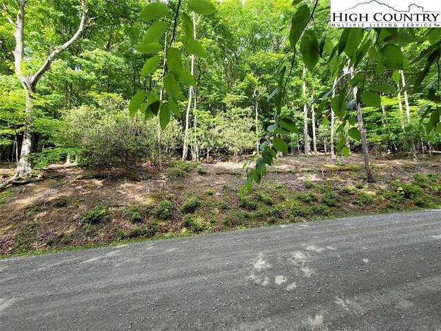 178 Rhododendron Road, Beech Mountain, NC 28604 (#231309) :: Mossy Oak Properties Land and Luxury