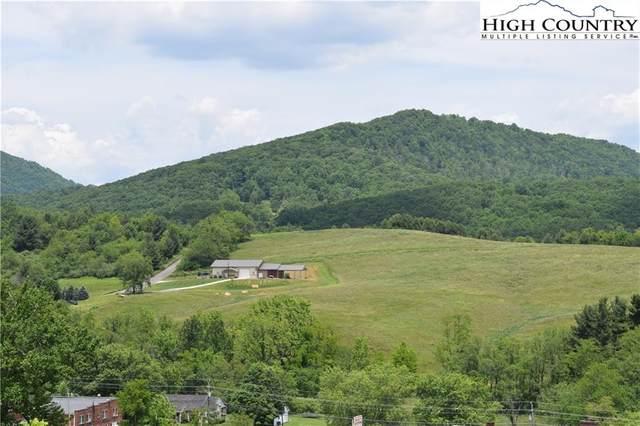 971 Us Highway 221, Jefferson, NC 28640 (#231346) :: Mossy Oak Properties Land and Luxury