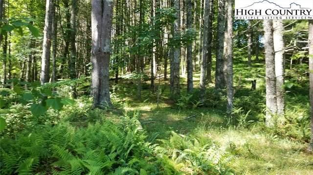 TBD Lot 16 The Woodlands Drive, Piney Creek, NC 28663 (#231430) :: Mossy Oak Properties Land and Luxury