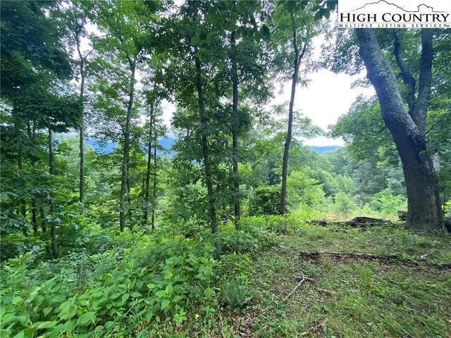Lot 25 Bee Tree Ridge Lane, Vilas, NC 28692 (#231823) :: Mossy Oak Properties Land and Luxury