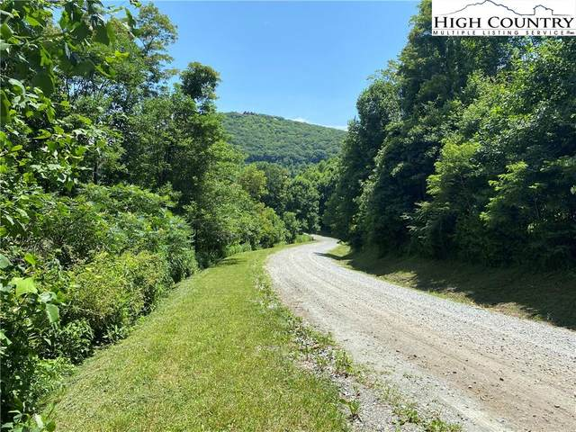 Lot 3 Great Sky Drive Drive, Todd, NC 28684 (#231975) :: Mossy Oak Properties Land and Luxury