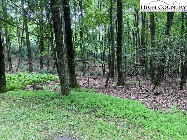TBD Wildwood Lane, Roaring Gap, NC 28668 (#232056) :: Mossy Oak Properties Land and Luxury