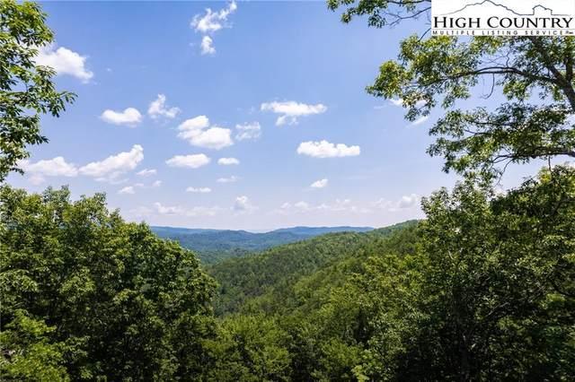 282 Ninebark Road, Boone, NC 28607 (#232125) :: Mossy Oak Properties Land and Luxury