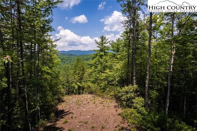 291 Ninebark Road, Boone, NC 28607 (#232126) :: Mossy Oak Properties Land and Luxury