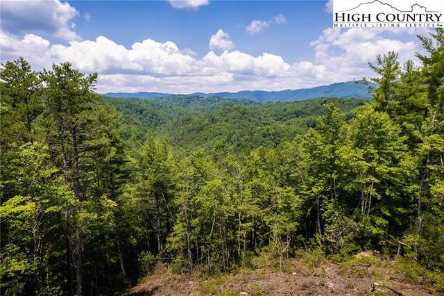 292 Ninebark Road, Boone, NC 28607 (#232128) :: Mossy Oak Properties Land and Luxury