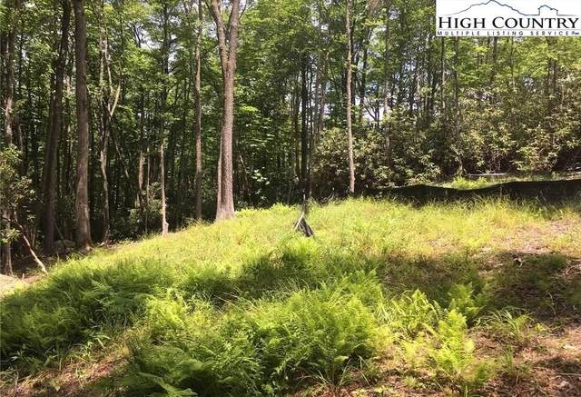 Lot 28 Twin Branches Road, Blowing Rock, NC 28605 (#232339) :: Mossy Oak Properties Land and Luxury