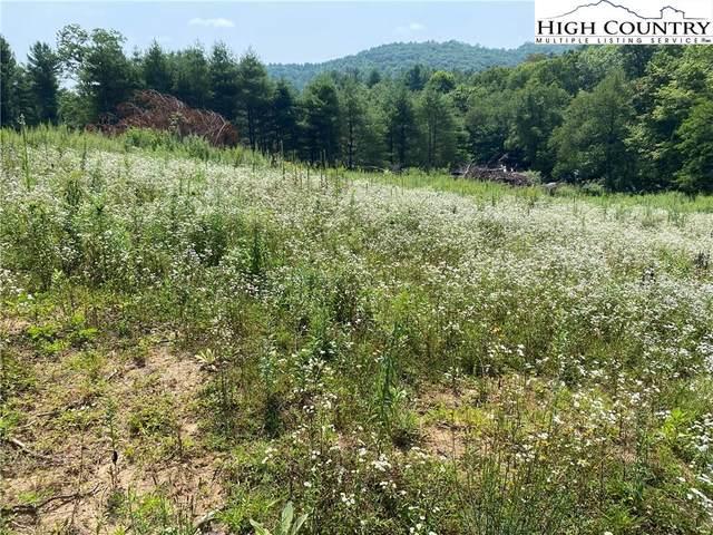 19 Lots Hidden Spring Road, West Jefferson, NC 28694 (#232353) :: Mossy Oak Properties Land and Luxury