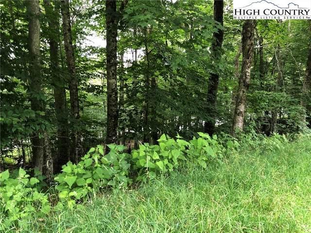 1051 Charter Hills Road, Beech Mountain, NC 28604 (#232482) :: Mossy Oak Properties Land and Luxury
