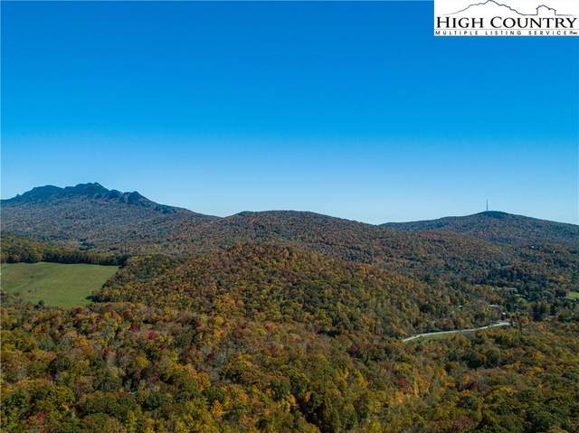 Lot 6 Linville Oaks Drive, Linville, NC 28657 (#232907) :: Mossy Oak Properties Land and Luxury