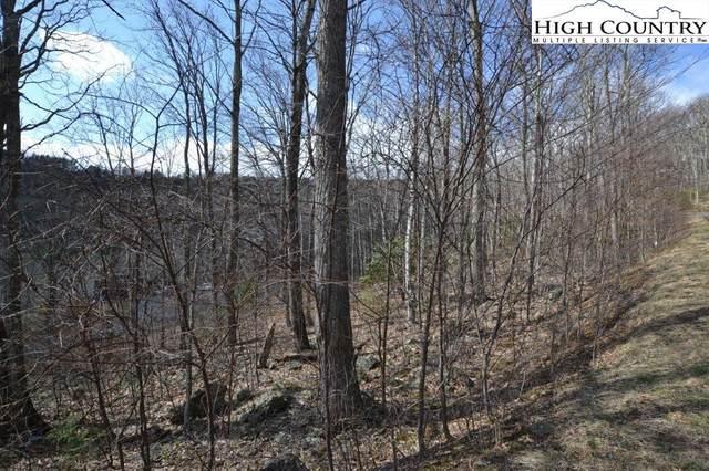Lot 116 Lauren Lane, West Jefferson, NC 28694 (#232914) :: Mossy Oak Properties Land and Luxury