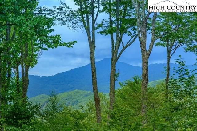 38 Summit Park Drive, Banner Elk, NC 28604 (#233055) :: Mossy Oak Properties Land and Luxury