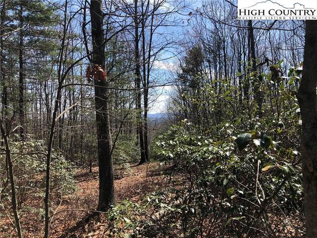 Lot 115 Derby Chase Court, McGrady, NC 28649 (#233081) :: Mossy Oak Properties Land and Luxury