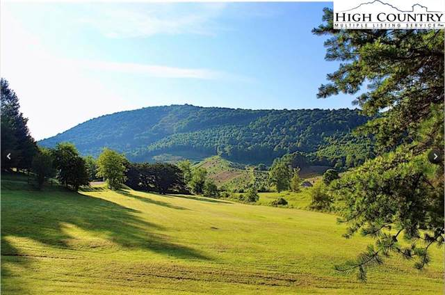 TBD Lot 11 Highland Meadows Drive, West Jefferson, NC 28694 (#233088) :: Mossy Oak Properties Land and Luxury
