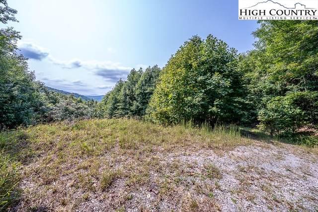 238 Beaver Dam Road, Banner Elk, NC 28622 (#233147) :: Mossy Oak Properties Land and Luxury