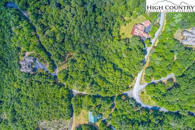 1212 Falls Creek Parkway, Elk Park, NC 28622 (#233158) :: Mossy Oak Properties Land and Luxury