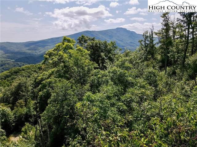 #25 Nettles Ridge Road, Banner Elk, NC 28604 (#233239) :: Mossy Oak Properties Land and Luxury
