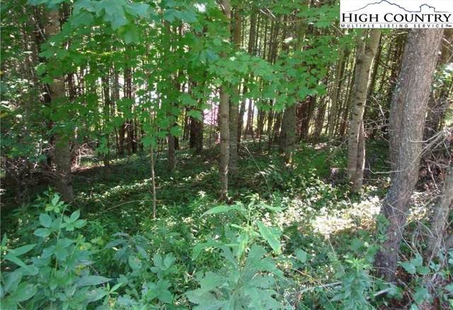 tbd Clear Waters Edge, Creston, NC 28615 (MLS #233423) :: RE/MAX Impact Realty