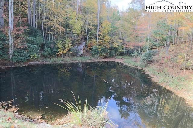TBD Pinnacle #56 Headwaters Drive, Elk Park, NC 28604 (#233739) :: Mossy Oak Properties Land and Luxury