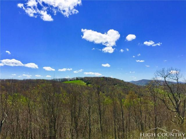 Lot 43 Algonquin Drive, Boone, NC 28607 (MLS #39201149) :: Keller Williams Realty - Exurbia Real Estate Group
